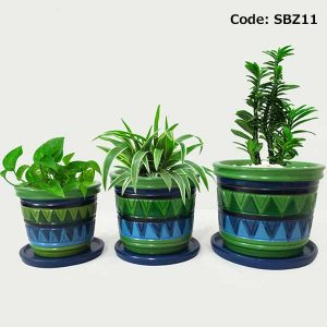 House Plant With Pot-SBZ11