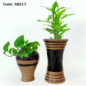 House Plant With Pot-SBZ17