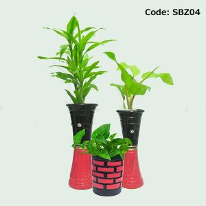 House Plant With Pot-SBZ04
