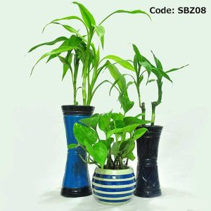 House Plant With Pot-SBZ08