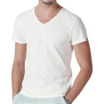 Export Quality Half sleeve Men's V-Neck T-Shirt By Apara