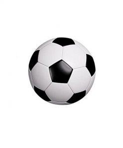 সাদা কালো ফুটবল সাইজ ৩
