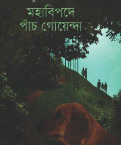 মহাবিপদে পাঁচ গোয়েন্দা: সুমন্ত আসলাম