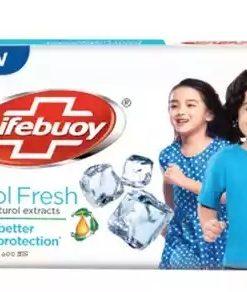 Lifebuoy Cool Fresh Skin Cleansing Bar (100 gm)